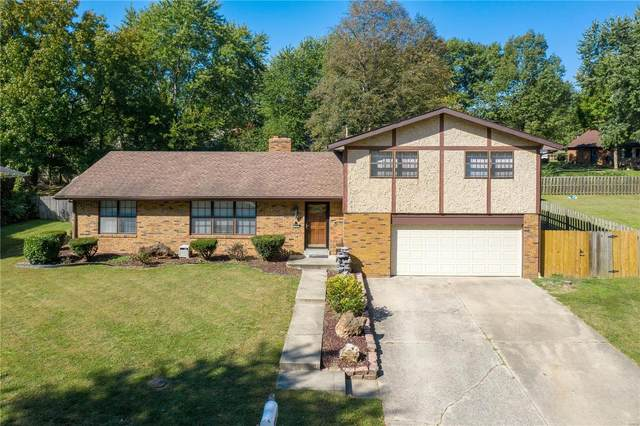 113 Twin Lake Drive, Swansea, IL 62226 (#20058063) :: The Becky O'Neill Power Home Selling Team