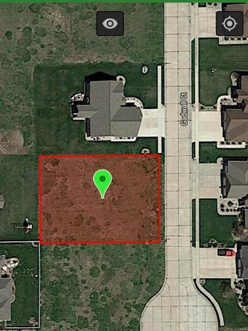 385 Gadwall, STAUNTON, IL 62088 (#20058280) :: PalmerHouse Properties LLC