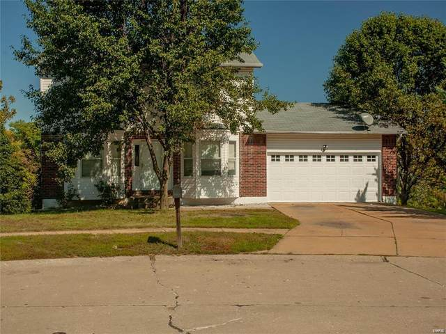 1981 Saint Johns, Arnold, MO 63010 (#20058316) :: The Becky O'Neill Power Home Selling Team