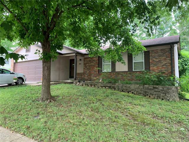 4925 Evelynaire, Black Jack, MO 63033 (#20058550) :: The Becky O'Neill Power Home Selling Team