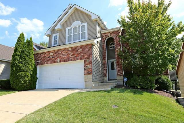 3610 Candlewyck Green Court, Florissant, MO 63034 (#20060317) :: Parson Realty Group