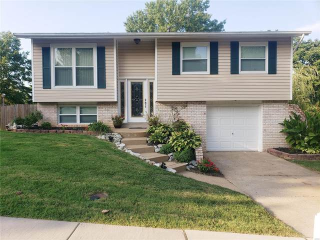 2809 Gatling, St Louis, MO 63129 (#20060555) :: The Becky O'Neill Power Home Selling Team