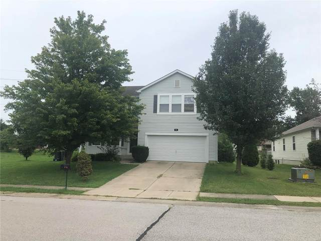4 Westhaven Meadows, Belleville, IL 62220 (#20062862) :: Matt Smith Real Estate Group
