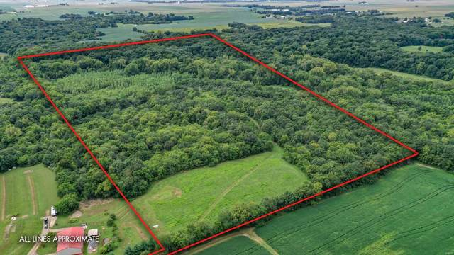 10461 Bounds Road, SHIPMAN, IL 62685 (#20062940) :: Tarrant & Harman Real Estate and Auction Co.