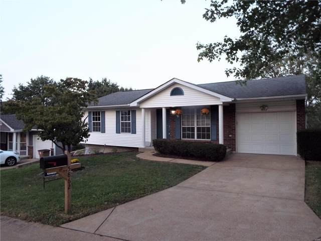 5862 Parkmont Drive, Imperial, MO 63052 (#20063364) :: The Becky O'Neill Power Home Selling Team