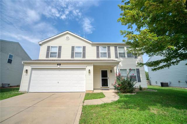 344 Falling Leaf Way, Mascoutah, IL 62258 (#20063395) :: Parson Realty Group