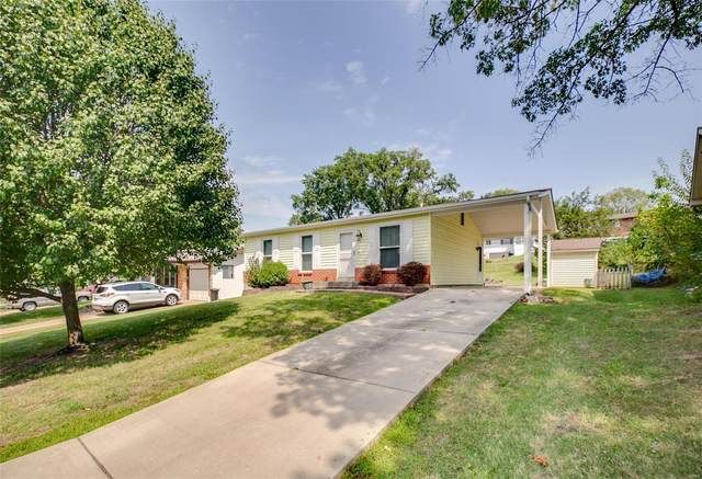 183 Tapestry Drive, St Louis, MO 63129 (#20063816) :: Parson Realty Group