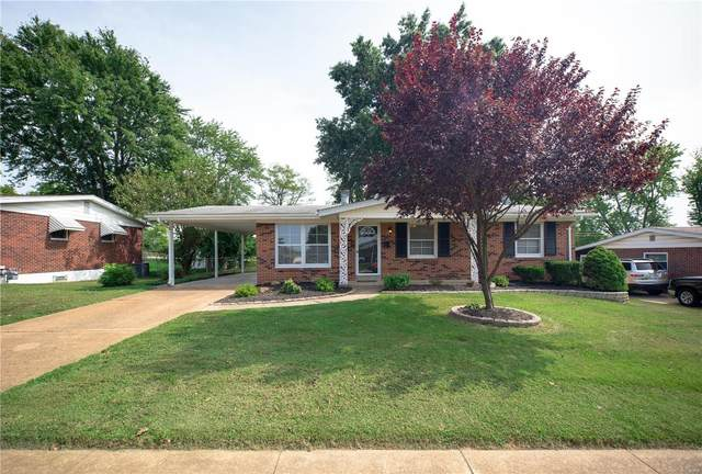 10238 Mullally, St Louis, MO 63123 (#20063817) :: Kelly Hager Group | TdD Premier Real Estate