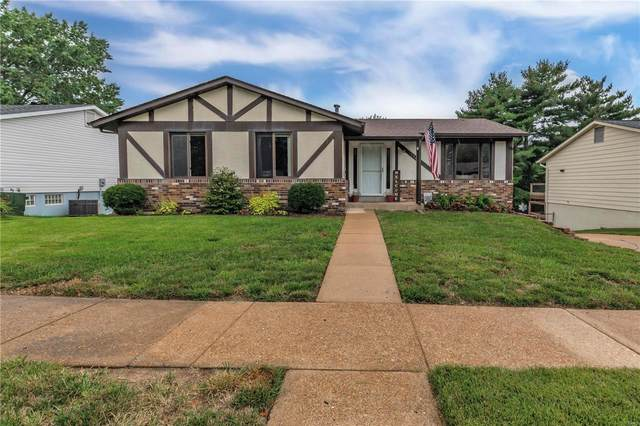5649 Chalet Forest Drive, St Louis, MO 63129 (#20063935) :: The Becky O'Neill Power Home Selling Team