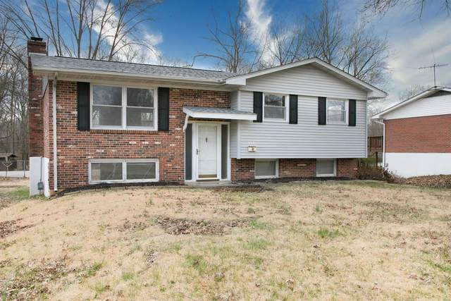 108 Bobbie Drive, Belleville, IL 62226 (#20064635) :: The Becky O'Neill Power Home Selling Team