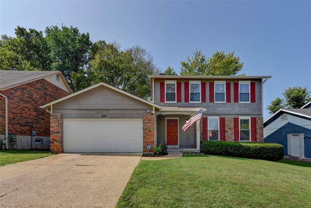 850 Peace Haven, St Louis, MO 63125 (#20064971) :: Kelly Hager Group | TdD Premier Real Estate