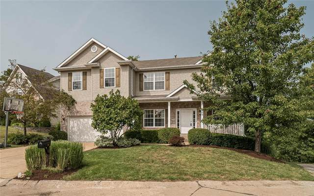 209 Romaine Spring View Court, Fenton, MO 63026 (#20066748) :: The Becky O'Neill Power Home Selling Team