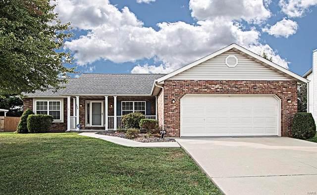 725 Aladar Drive, O'Fallon, IL 62269 (#20067792) :: The Becky O'Neill Power Home Selling Team