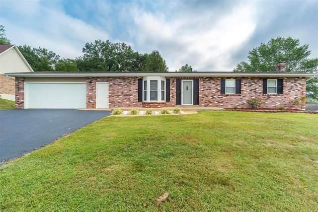 100 Bonnie Lane, Festus, MO 63028 (#20067969) :: Kelly Hager Group | TdD Premier Real Estate