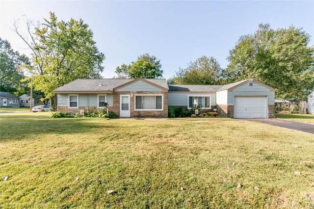 11000 Saint Raphael Lane, Saint Ann, MO 63074 (#20068976) :: The Becky O'Neill Power Home Selling Team