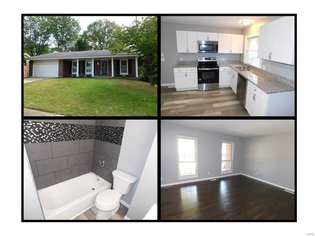 11902 Cato, Florissant, MO 63033 (#20069118) :: Realty Executives, Fort Leonard Wood LLC
