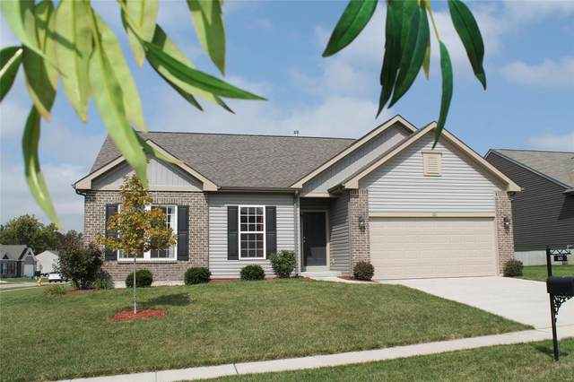 101 Crystal Creek Court, Wentzville, MO 63385 (#20070190) :: RE/MAX Vision