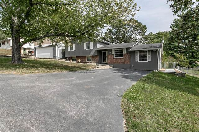 3868 1st, Pacific, MO 63069 (#20070234) :: RE/MAX Vision