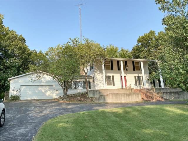 10 Castle Acres, Festus, MO 63028 (#20070546) :: RE/MAX Professional Realty