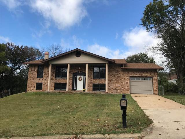 304 Rosewood, Park Hills, MO 63601 (#20071123) :: Clarity Street Realty