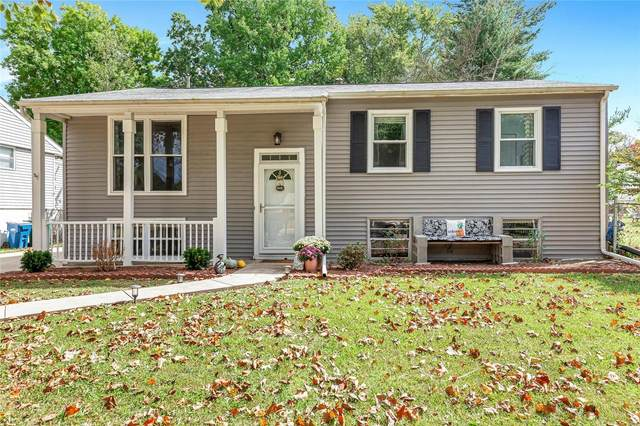1244 Marchi Drive, St Louis, MO 63125 (#20071639) :: Parson Realty Group