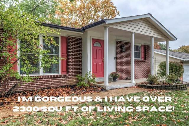 St Louis, MO 63146 :: The Becky O'Neill Power Home Selling Team