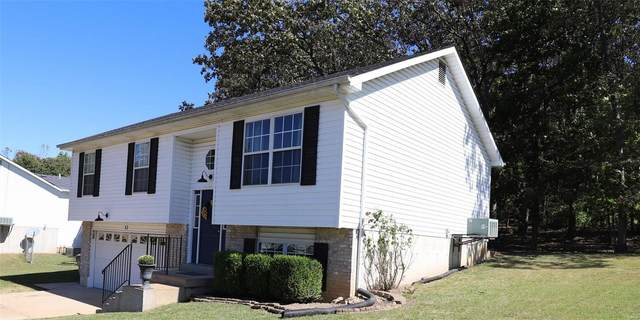 57 Adventura Drive, Festus, MO 63028 (#20071840) :: Walker Real Estate Team