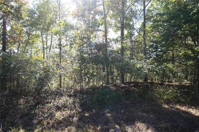 0 Lot 38 Sleepy Hollow, Wappapello, MO 63966 (#20071900) :: Walker Real Estate Team