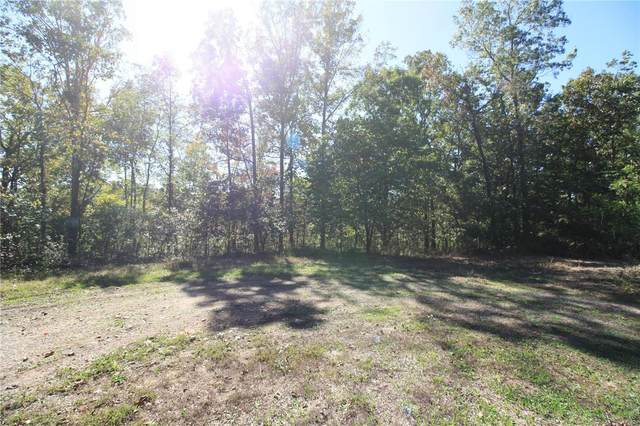 0 Lot 39 Sleepy Hollow, Wappapello, MO 63966 (#20071910) :: Walker Real Estate Team