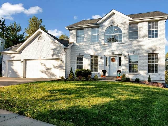 16281 Autumn View Terrace Drive, Ellisville, MO 63011 (#20072338) :: PalmerHouse Properties LLC