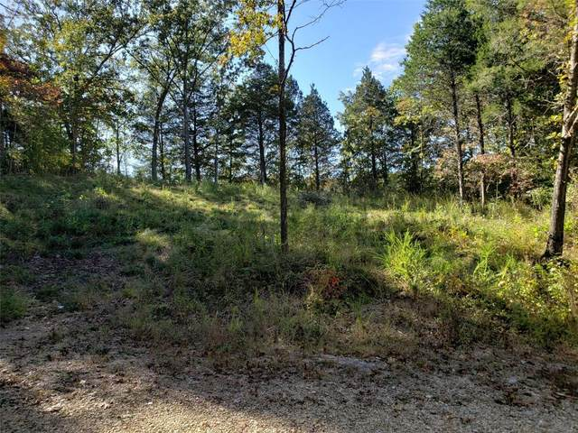 9487 Bent Tree Dr., Hillsboro, MO 63050 (#20072463) :: Walker Real Estate Team