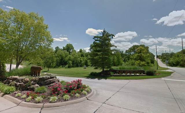 350 N Point Prairie, Wentzville, MO 63385 (#20073702) :: Realty Executives, Fort Leonard Wood LLC
