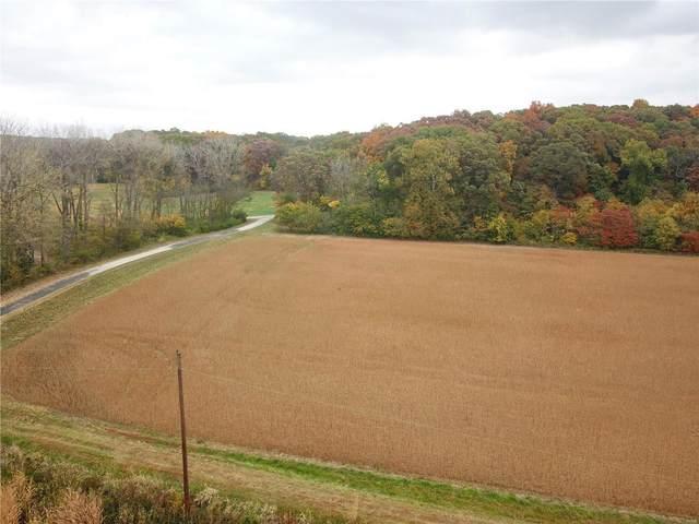 8300 Shoal Creek Trail, Hillsboro, IL 62049 (#20074989) :: Fusion Realty, LLC
