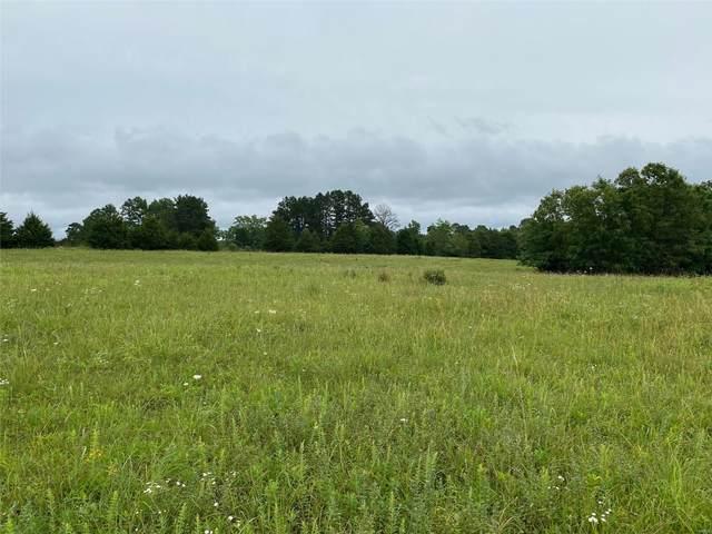 19730 Golden Trail Drive, Raymondville, MO 65555 (#20075051) :: Century 21 Advantage