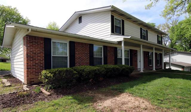 919 Fernview Drive, Creve Coeur, MO 63141 (#20075088) :: PalmerHouse Properties LLC