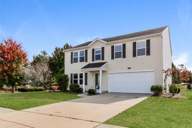 141 Liberty Torch Court, Belleville, IL 62220 (#20075193) :: Barrett Realty Group