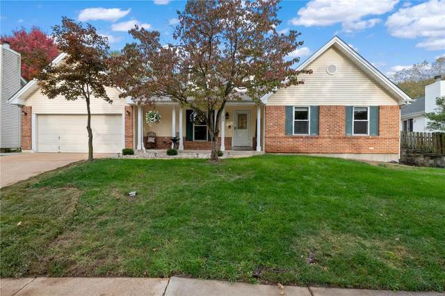327 Thunderhead Canyon Drive, Wildwood, MO 63011 (#20075409) :: Kelly Hager Group | TdD Premier Real Estate