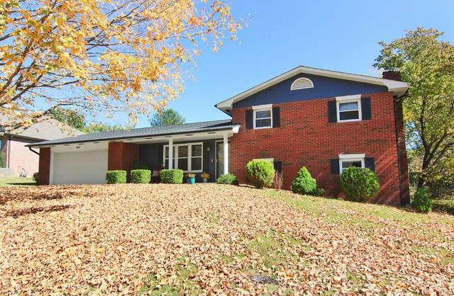 1802 Northbridge Drive, Cape Girardeau, MO 63701 (#20075494) :: Clarity Street Realty