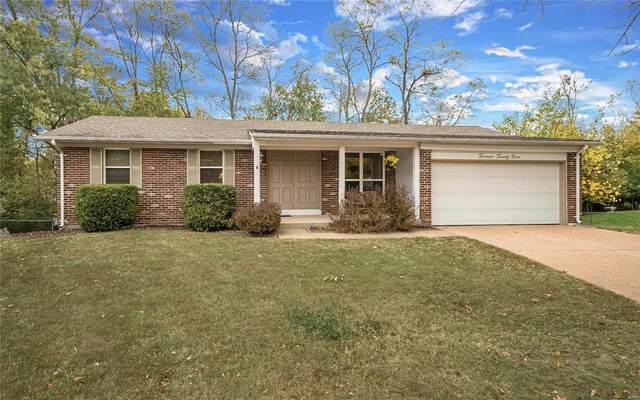 1329 Cypress Trail Lane, Fenton, MO 63026 (#20075771) :: PalmerHouse Properties LLC