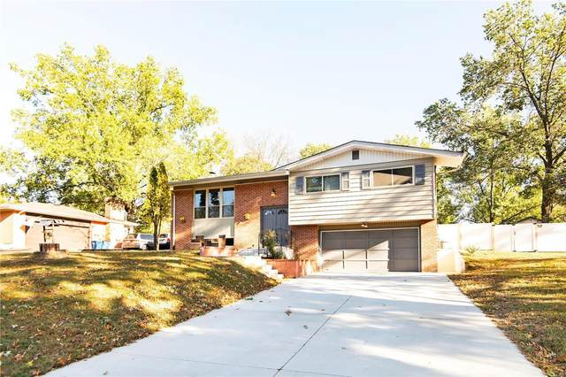 5064 Caribee Drive, St Louis, MO 63128 (#20075850) :: The Becky O'Neill Power Home Selling Team