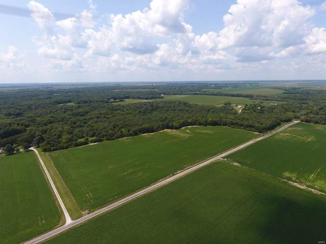 0 Wilhoit Airport Road, STAUNTON, IL 62088 (#20075908) :: Tarrant & Harman Real Estate and Auction Co.