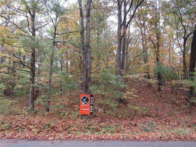 0 County Road 379, Whitewater, MO 63785 (#20076091) :: St. Louis Finest Homes Realty Group