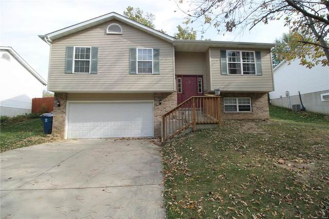 295 Harding Street, Collinsville, IL 62234 (#20076110) :: Tarrant & Harman Real Estate and Auction Co.