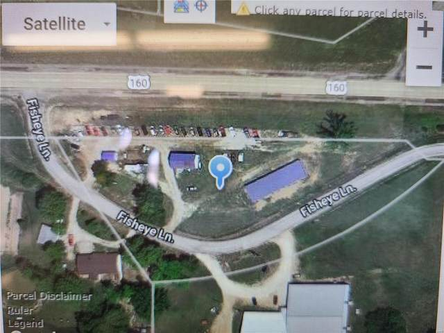 160 Highway 160 East, Doniphan, MO 63935 (#20076218) :: Parson Realty Group