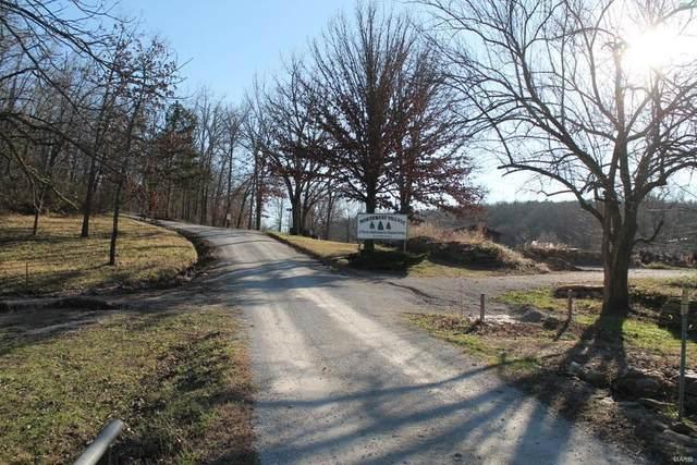 9121 Dow Lane, Mountain Grove, MO 65711 (#20076482) :: Clarity Street Realty
