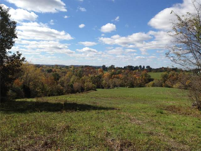 22 Acres Tree Farm Road, Unincorporated, MO 65041 (#20076654) :: Parson Realty Group