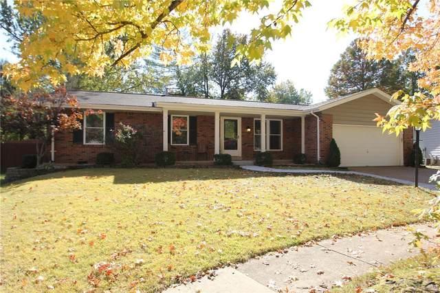 2514 Denlo Court, Fenton, MO 63026 (#20076685) :: PalmerHouse Properties LLC