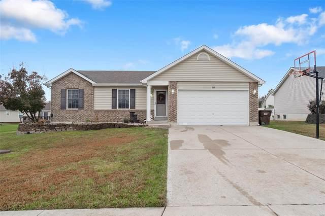 325 Turkey Roost Lane, Troy, MO 63379 (#20077185) :: PalmerHouse Properties LLC