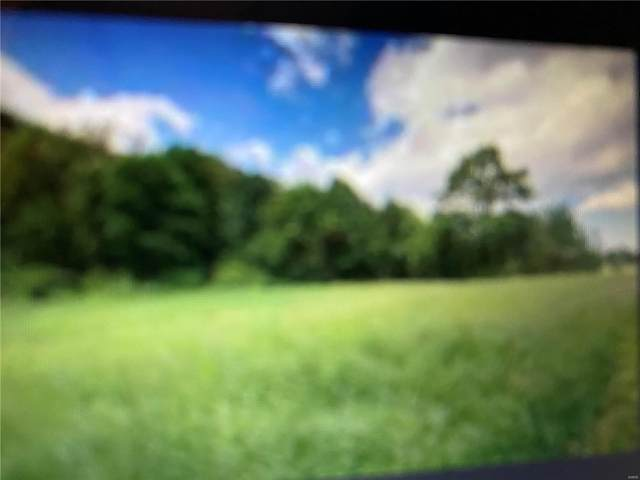 209 Karrick Lane, SORENTO, IL 62086 (#20077547) :: The Becky O'Neill Power Home Selling Team