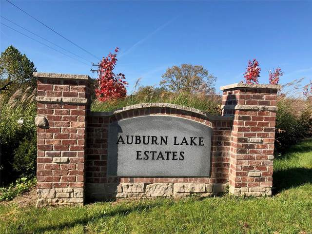261 Auburn Ridge (Lot 46) Drive, Troy, MO 63379 (#20077644) :: Kelly Hager Group | TdD Premier Real Estate